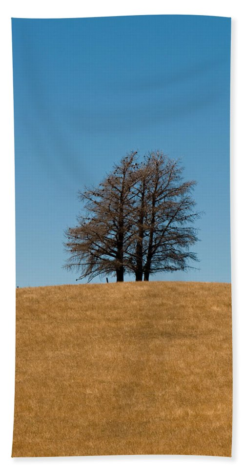 Agriculture Bath Sheet featuring the photograph Tree Formation On A Hill Of Veldt by U Schade