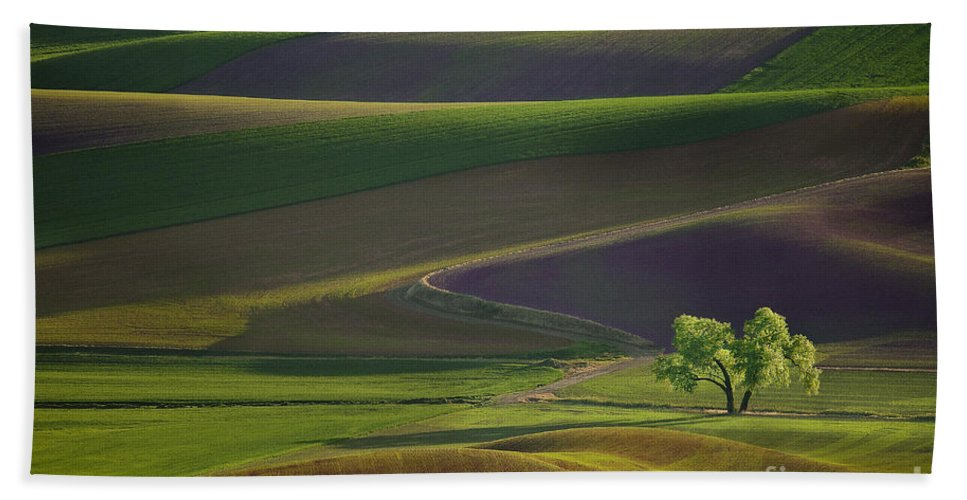 Palouse Bath Sheet featuring the photograph Tree In The Palouse by Lori Grimmett
