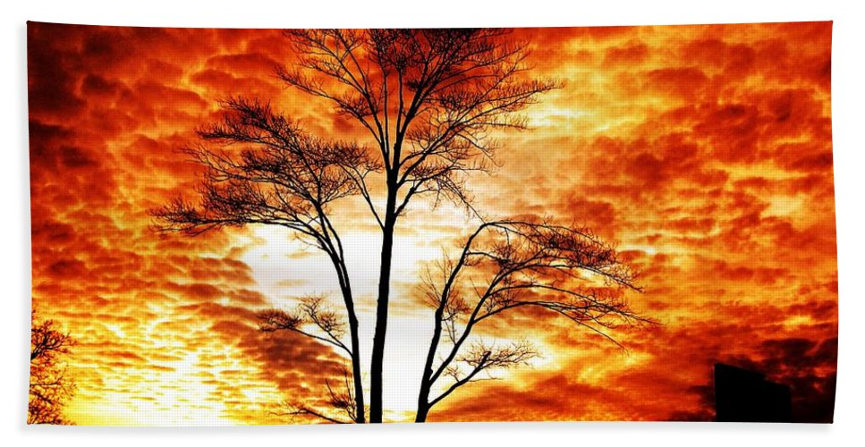 Tree Bath Sheet featuring the photograph Tree Light by Ms Judi
