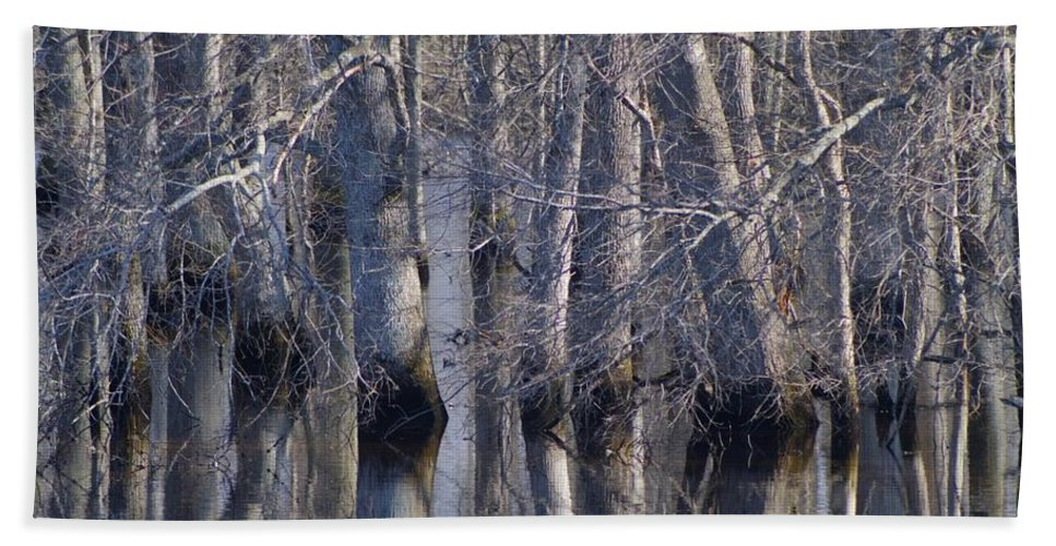 Tree Bath Sheet featuring the photograph Tree Reflection Abstract by Kathy Clark