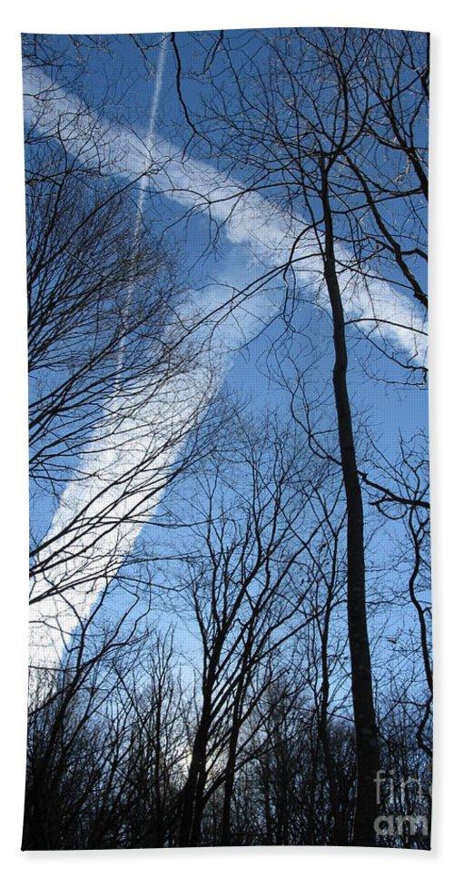 Tree Hand Towel featuring the photograph Trees And Trails by Ausra Huntington nee Paulauskaite