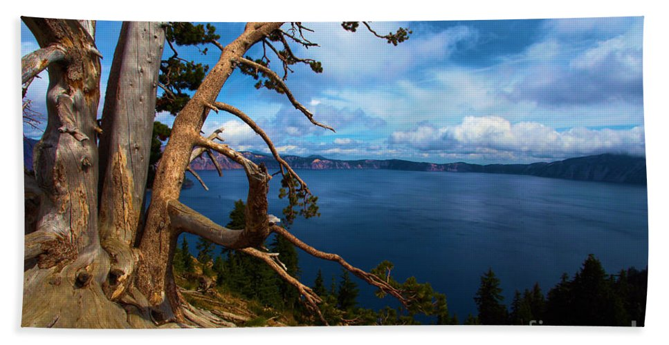 Crater Lake National Park Hand Towel featuring the photograph Trees On The Crater by Adam Jewell