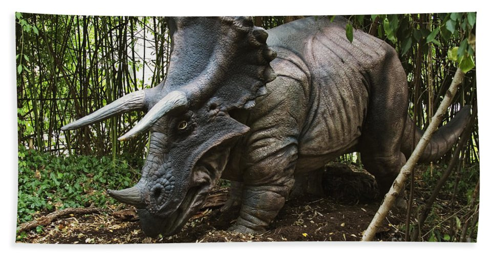 Cretaceous Hand Towel featuring the photograph Triceratops by David Davis and Photo Researchers