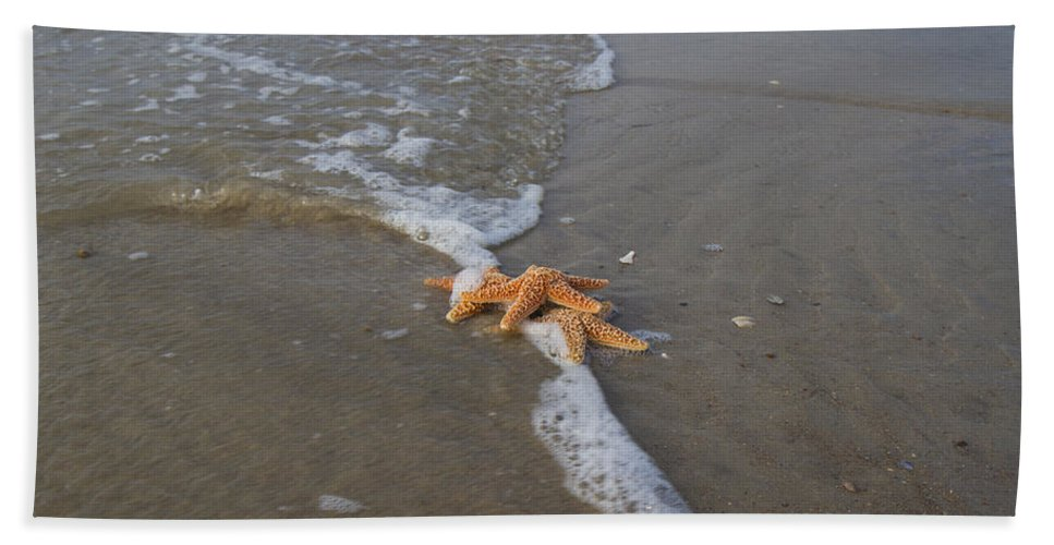Starfish Hand Towel featuring the photograph Trio by Betsy Knapp