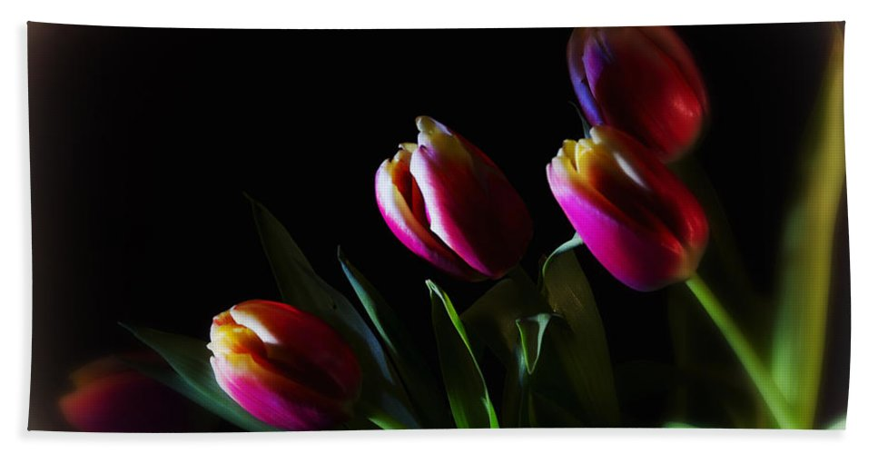 Flower Hand Towel featuring the photograph Tulip Dream by Linda Tiepelman