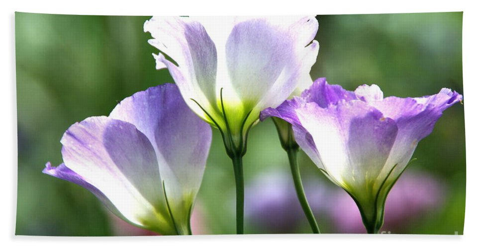 Tulip Gentian Bath Sheet featuring the photograph Tulip Gentian Flowers by Byron Varvarigos