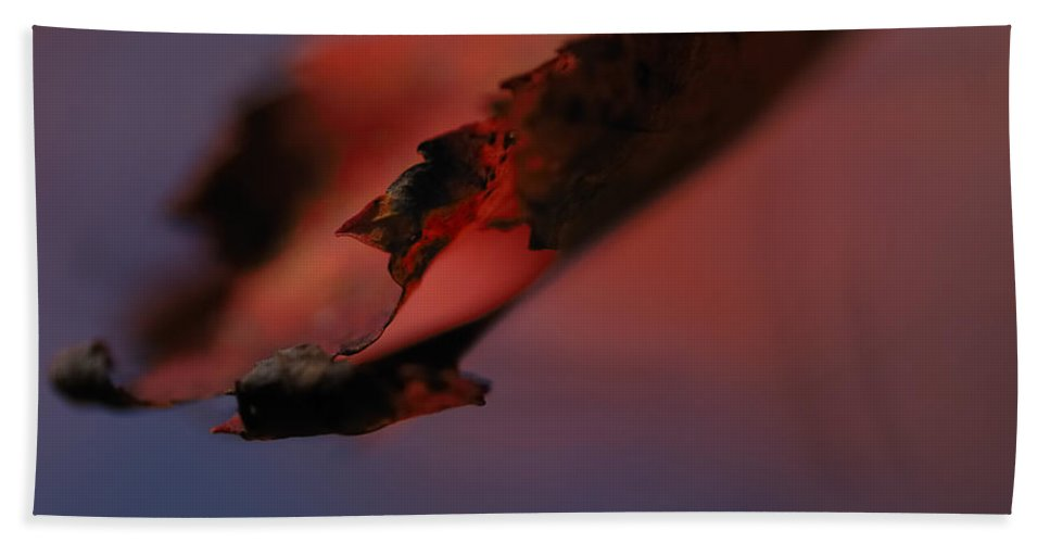 Nature Bath Sheet featuring the photograph Turn Over A New Leaf by Susan Capuano