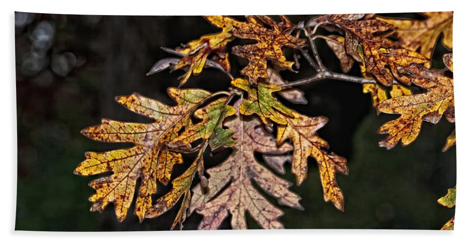 Fall Bath Sheet featuring the photograph Turning Leaves by Scott Wood