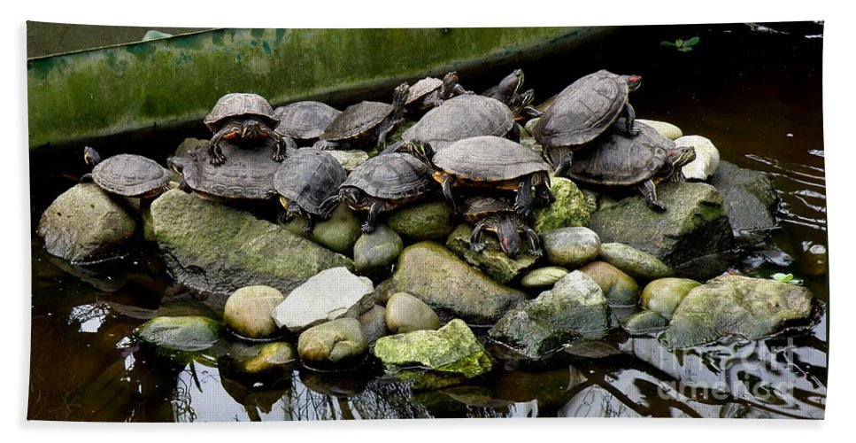 Turtle Bath Sheet featuring the photograph Turtle Island by Lainie Wrightson