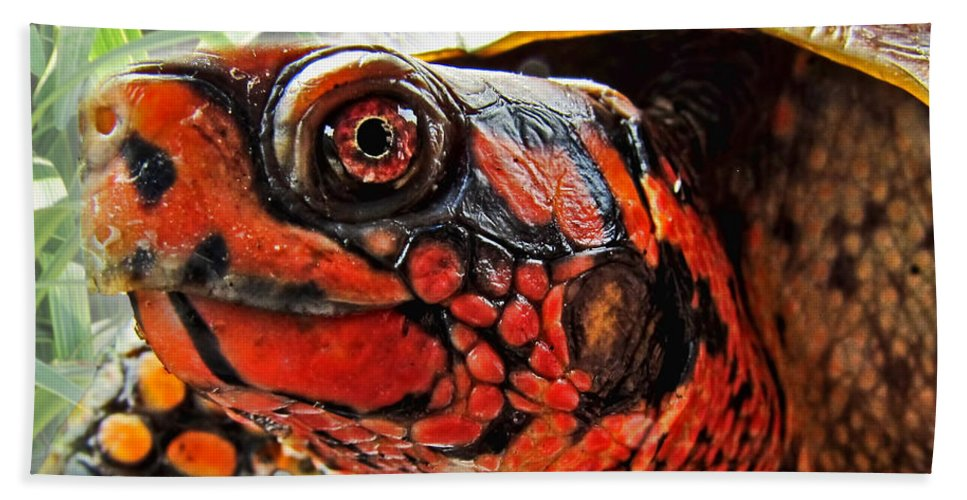 Nature Bath Sheet featuring the photograph Turtle Smile by Debbie Portwood