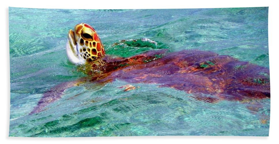 Sea Turtles Bath Sheet featuring the photograph Turtle Time by Karen Wiles