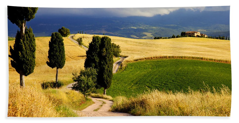 Cypress Bath Sheet featuring the photograph Tuscany by Brian Jannsen