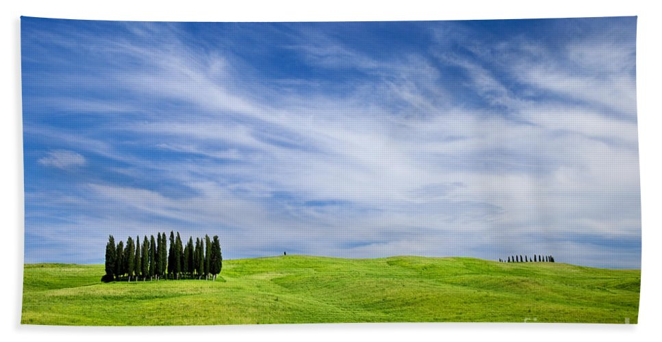 Cypress Bath Sheet featuring the photograph Tuscany Cypress by Brian Jannsen