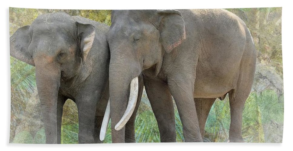 Trunk Hand Towel featuring the photograph Twin Elephants by Rudy Umans