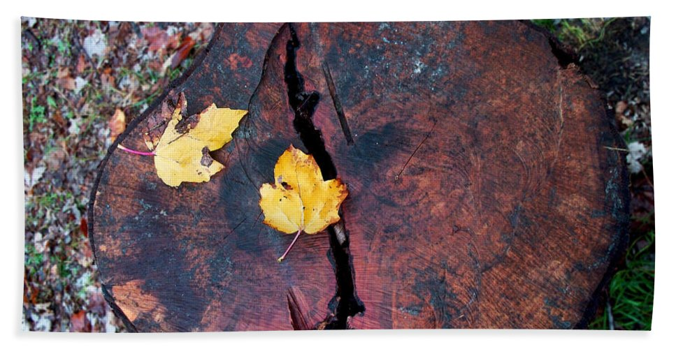 Nature Bath Sheet featuring the photograph Twin Fallen Leaves by Debbie Portwood