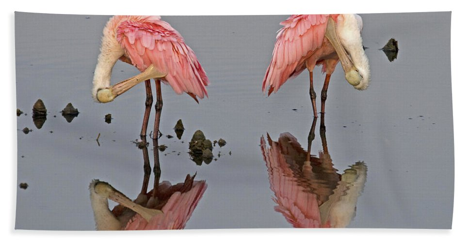 Spoonbill Bath Sheet featuring the photograph Twins Spoonbills On The Lake by TJ Baccari