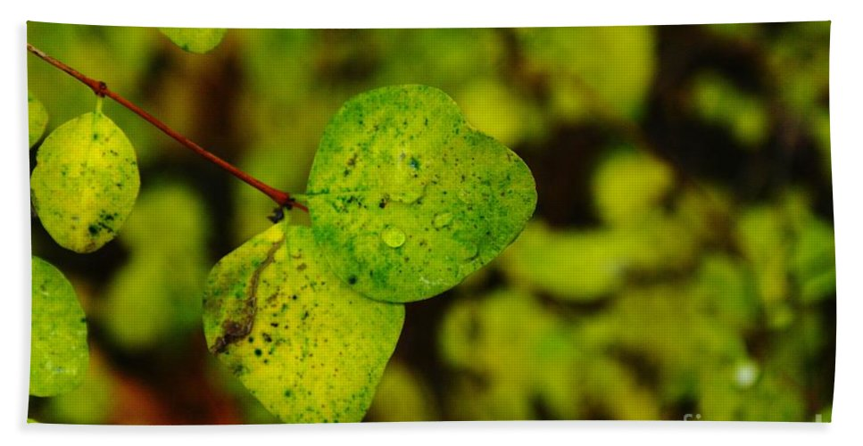 Leaves Bath Sheet featuring the photograph Two Of A Kind by Jeff Swan