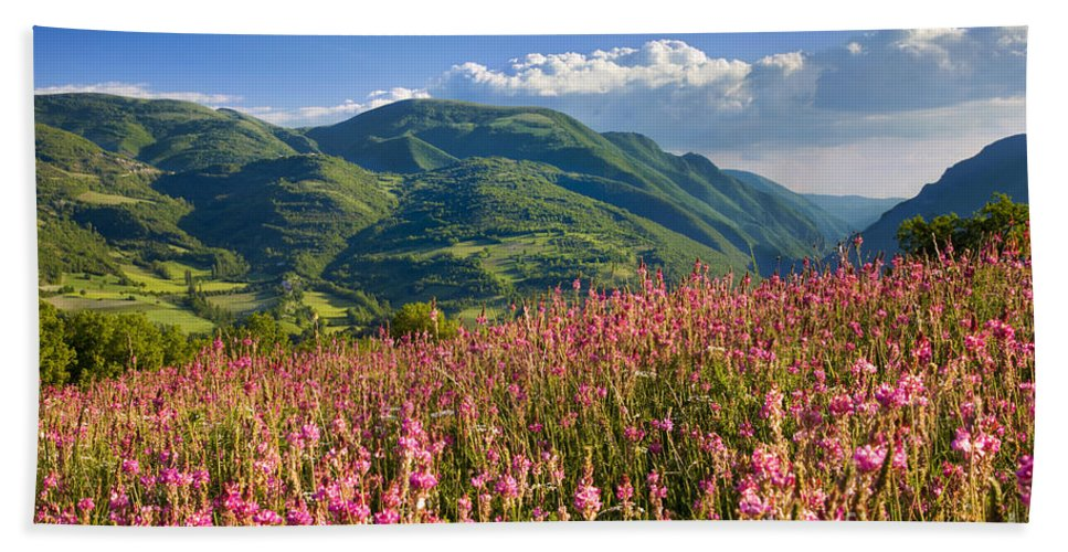 Wildflowers Bath Sheet featuring the photograph Umbria by Brian Jannsen