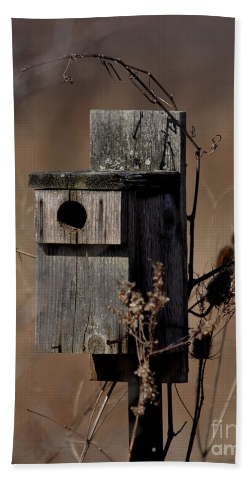 Bird House Bath Sheet featuring the photograph Used House - Free Rent by Ronald Grogan