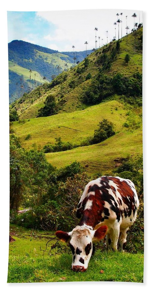 Vaca Bath Sheet featuring the photograph Vaca by Skip Hunt