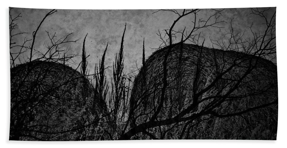 Window Framed Prints Framed Prints Bath Sheet featuring the photograph Valley Of Sticks by The Artist Project