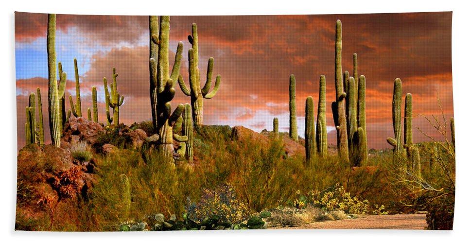 Arizona Bath Sheet featuring the photograph Via Del Oeste by Ciro Verdi