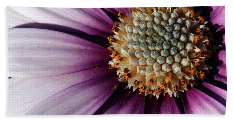 Flower Hand Towel featuring the photograph Vibrant by Heidi Smith