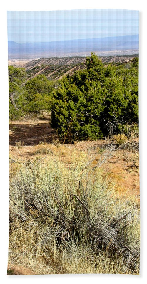 Desert Hand Towel featuring the photograph View Of The Desert New Mexico by Kathleen Grace