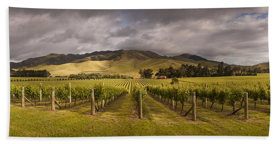 00479623 Bath Towel featuring the photograph Vineyard Awatere Valley In Marlborough by Colin Monteath