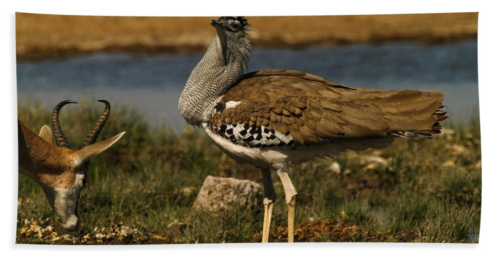 Action Hand Towel featuring the photograph Watch It by Alistair Lyne