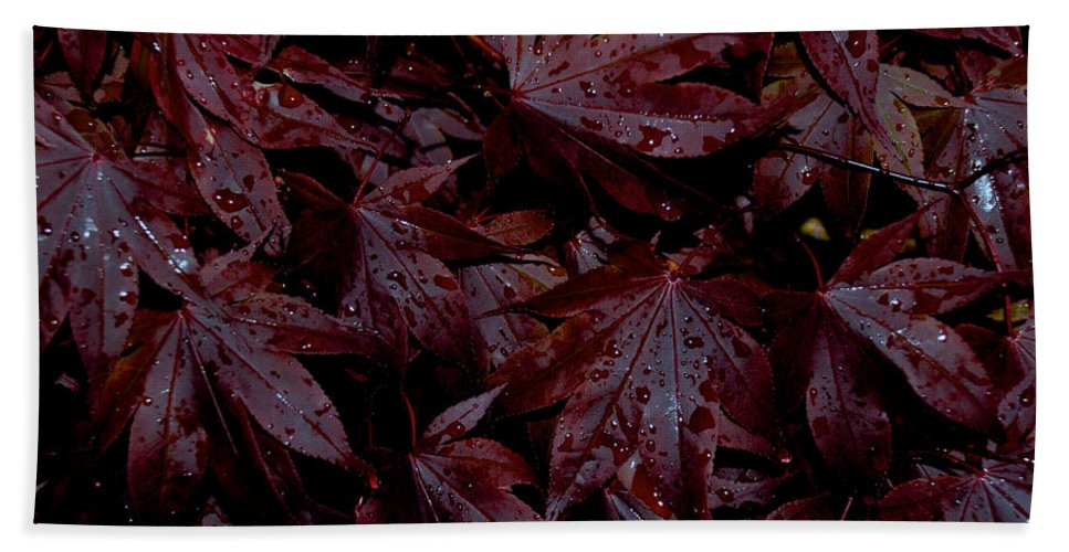 Red Leaves Hand Towel featuring the photograph Water Beads On A Bed Of Red by Mark Dodd