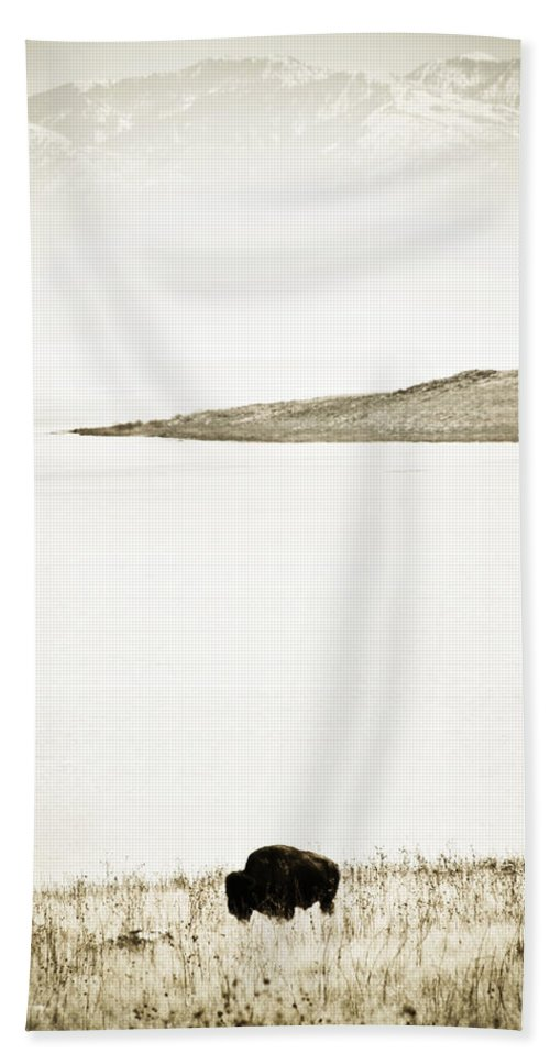 Utah Hand Towel featuring the photograph Water Buffalo 2 by Marilyn Hunt