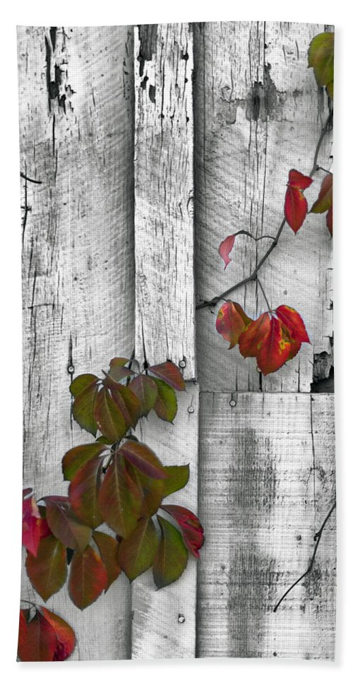 Textures Hand Towel featuring the photograph Weathered by Edward Kreis