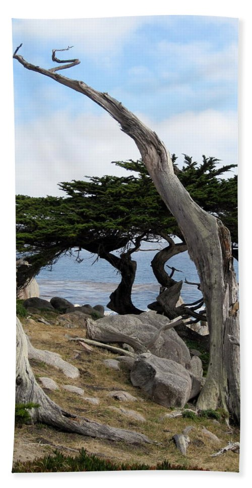 Tree Bath Sheet featuring the photograph Weathered Tree On California Coast by Carla Parris