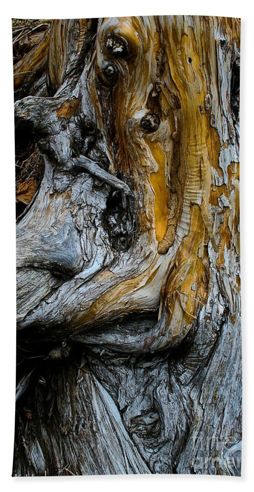 Nature Hand Towel featuring the photograph Weathered Wood by Susan Herber
