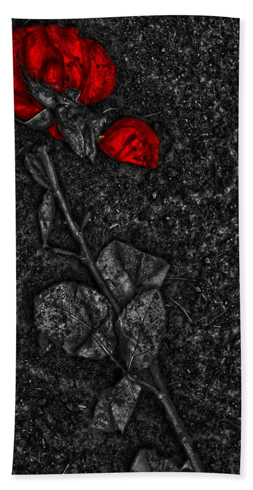 Jerry Cordeiro Framed Prints Photographs Bath Sheet featuring the photograph Weep Of A Rose by The Artist Project
