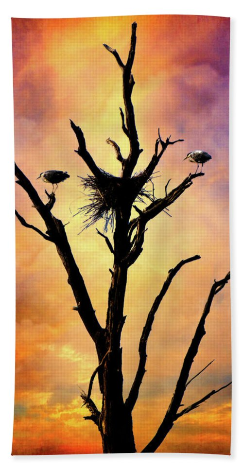 Birds Hand Towel featuring the photograph Westward Watch by Chris Lord