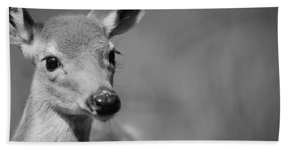 Deer Hand Towel featuring the photograph What A Face by Karol Livote