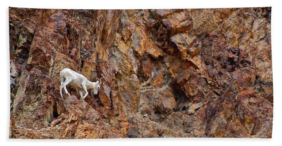 Alaska Bath Sheet featuring the photograph Where Wolves Don't Tread by Eric Tressler