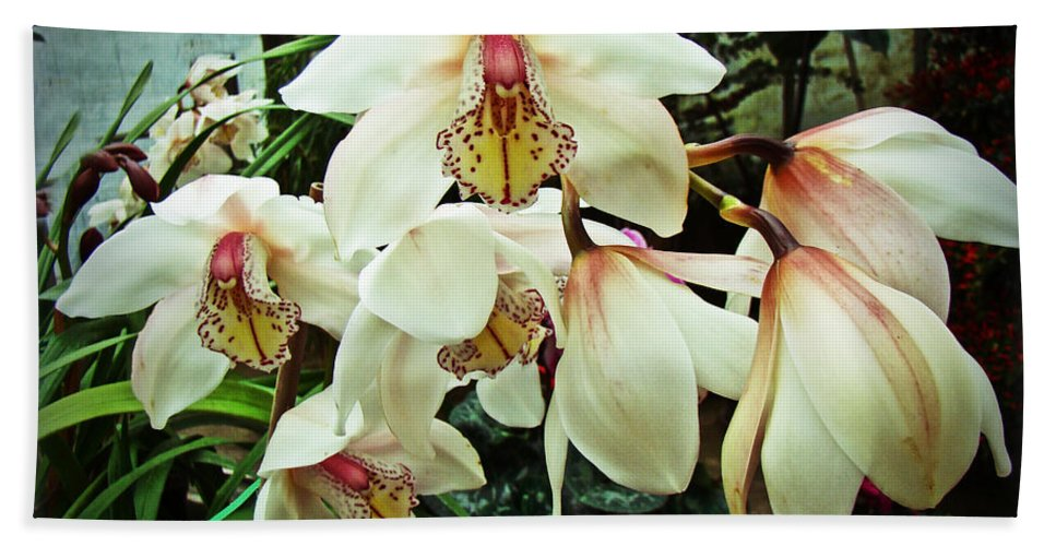 Orchid Bath Sheet featuring the photograph Whispers In The Greenhouse by Mother Nature