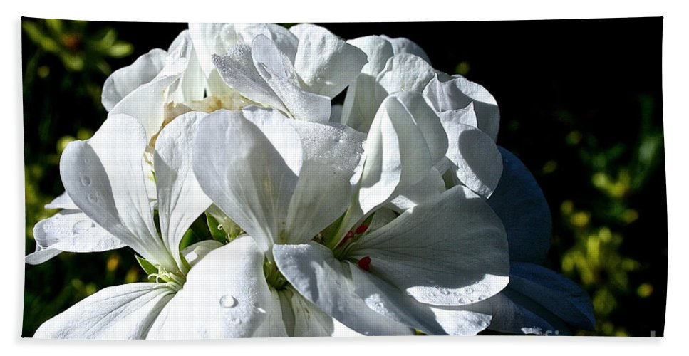 Plant Bath Sheet featuring the photograph White Dew by Susan Herber