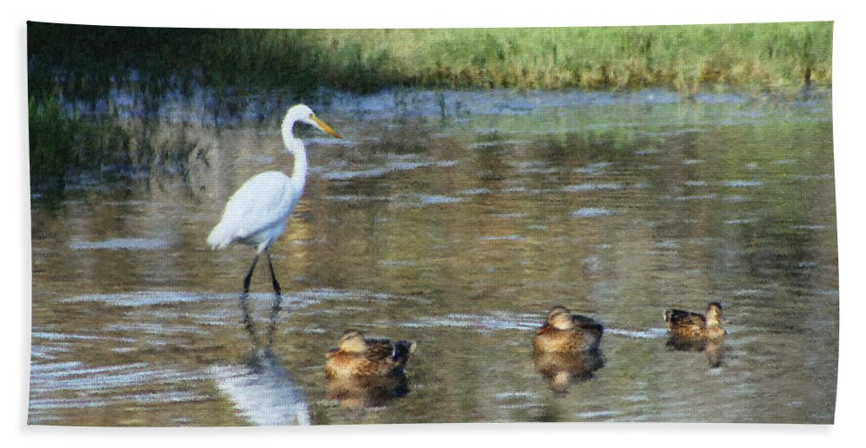 Heron Hand Towel featuring the photograph White Heron And Baby Ducks by Diana Haronis