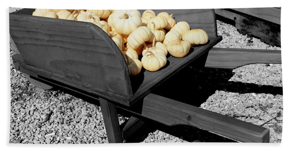 Pumpkin Bath Sheet featuring the photograph White Pumpkin Harvest by Betty Northcutt