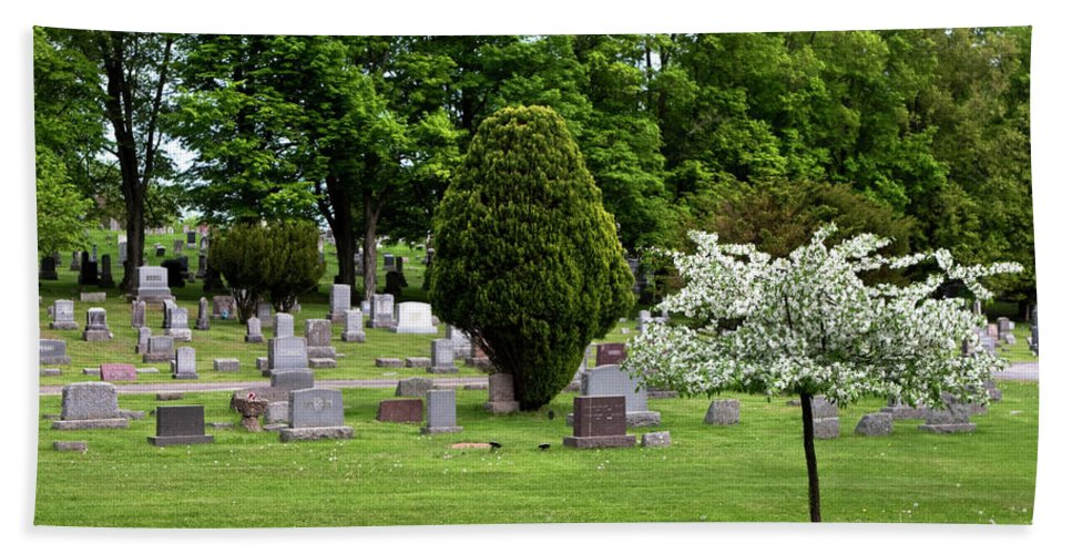 White Flowering Tree Bath Sheet featuring the photograph White Tree In Cemetery by Lorraine Devon Wilke