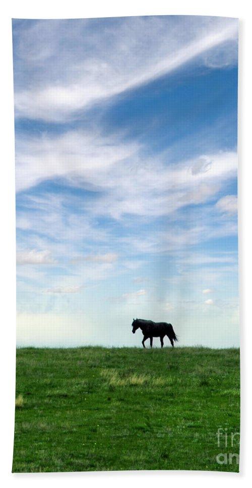 Horse Bath Sheet featuring the photograph Wild Horse On Grassy Hill by Jill Battaglia