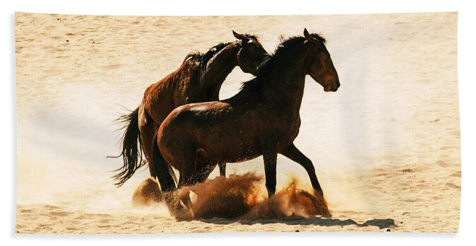 Action Hand Towel featuring the photograph Wild Stallion Clash 3 by Alistair Lyne