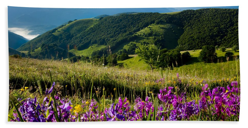 Field Bath Sheet featuring the photograph Wildflowers Umbria by Brian Jannsen