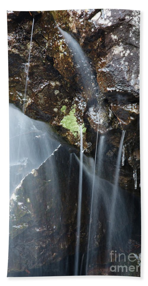 Biodiversity Bath Sheet featuring the photograph Willey Brook - White Mountains New Hampshire by Erin Paul Donovan