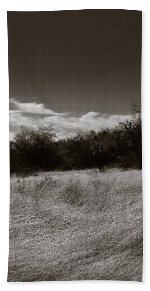 Black And White Bath Sheet featuring the photograph Wind Blown Grass 2 by Sean Wray