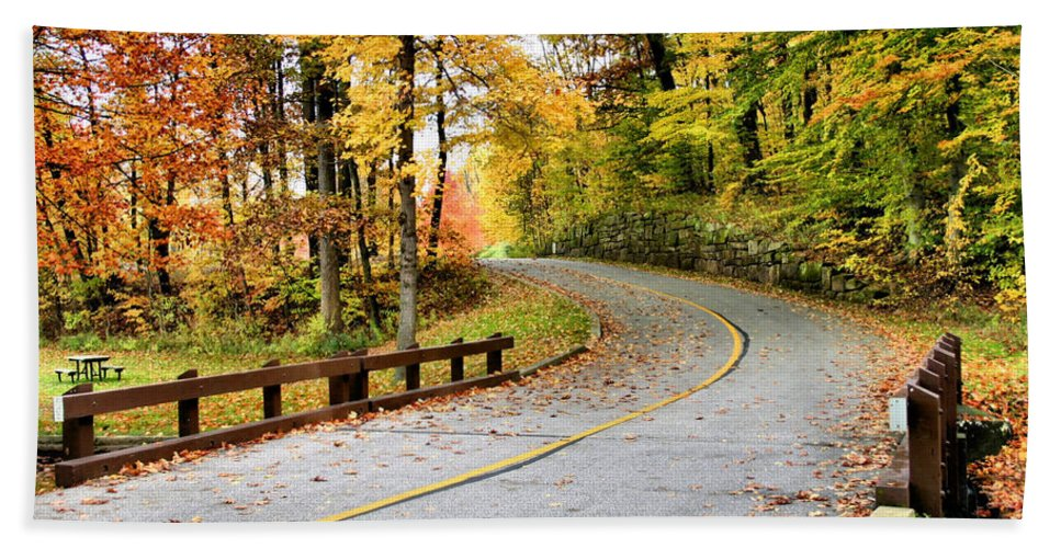 Monroe Falls State Park Hand Towel featuring the photograph Winding Road by Kristin Elmquist